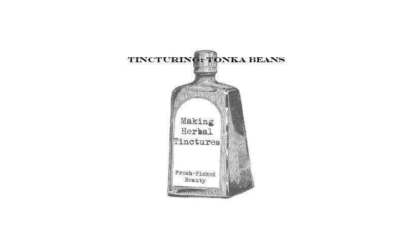 Tincture1