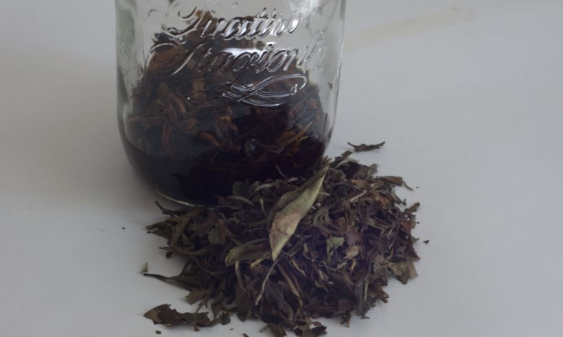 China Pai Mu Tan tea tincture